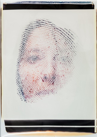 "S-1759, ""Portraits 2: Fingerprints"""