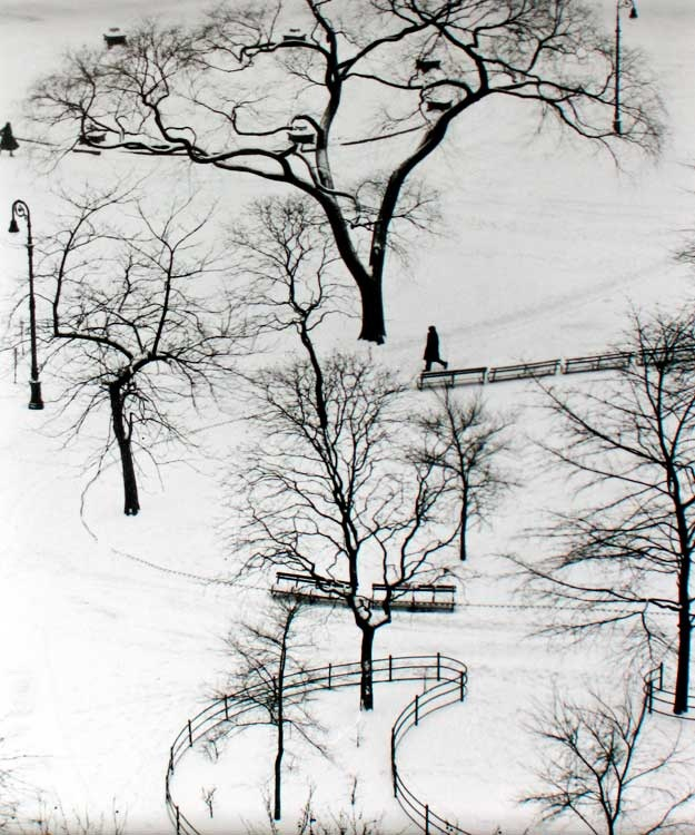 "S-0760, André Kertész, ""Washington Square, New York"", 1954, gelatin silver print, 12,7 x 9,2 cm"